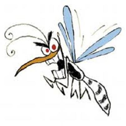 mosquito5-2-3.jpg