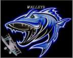 D-walleye's Avatar